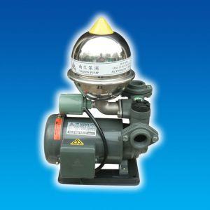 Máy bơm bánh răng tăng áp đầu gang  HCB225-1.18 26T 1/4HP Rờ le nhiệt