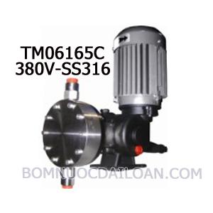 Bơm định lượng Injecta TM06165C-SS316-380V