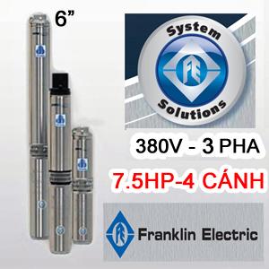 Bơm hỏa tiễn Franklin 6inch 46SR5F65-0463