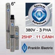 Bơm hỏa tiễn Franklin 6inch 65SR18F65-1164