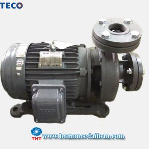 may-bom-ly-tam-truc-ngang-Teco-G33-50-4P-2HP