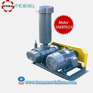 May-thoi-khi-Heywel-RSS-40-3HP-ENERTECH
