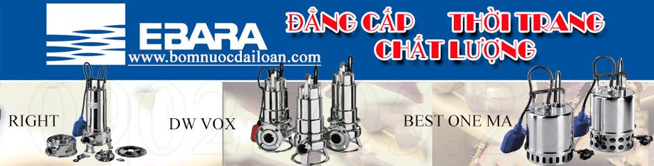 may-bom-chim-hut-nuoc-thai-ebara-www-bom-nuoc-dai-loan-com