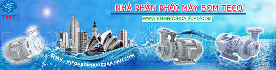 may-bom-nuoc-ly-tam-teco-chinh-hang-www-bom-nuoc-dai-loan-com