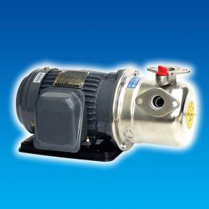 MAY-BOM-PHUN-VO-GANG-DAU-INOX-HJP225-1-75-205T-1HP