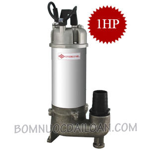 may-bom-chim-inox-evergush-EFS-10T